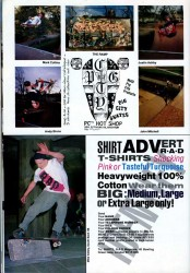 Pig City Shop at the Level and Mike Vallely in R.a.D shirt