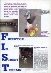 Freestyle in Stree Terrain -- skateboarding in transition