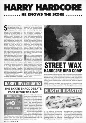 Scan of Harry Hardcore article from 1991 R.a.d Skateboard Magazine